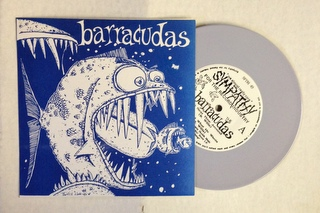 Barracudas / Next Time Around