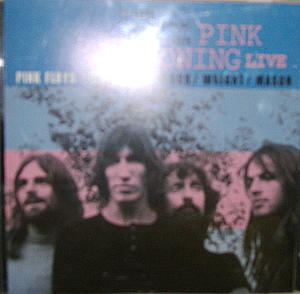 Pink Floyd - Pink Zoning Live
